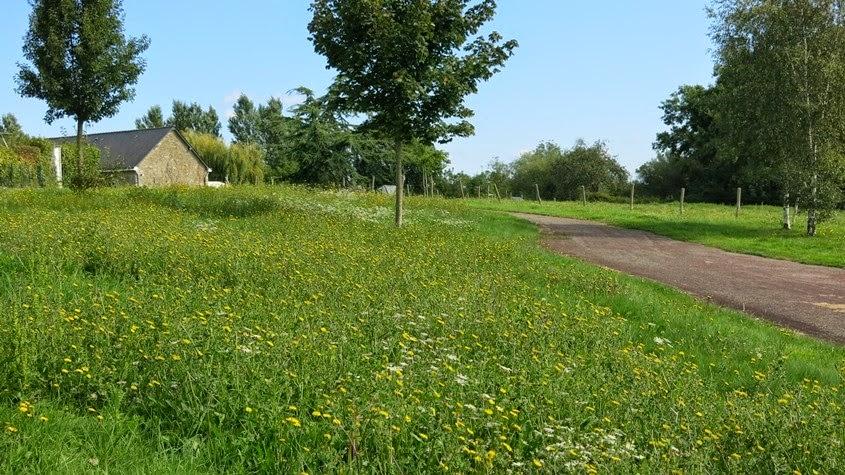 Gestion diff renci e ville de louvern for Gestion des espaces verts