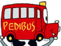 Arrêt provisoire du pédibus