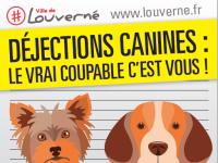 Déjections canines : les propriétaires sont responsables !